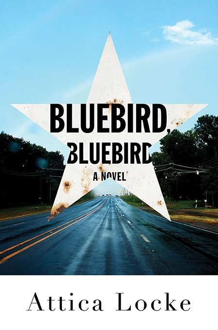 Bluebird-HC.jpg