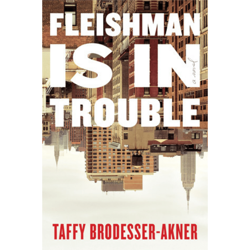 Fleishman is in Trouble by Taffy Brodesser-Akner — Open Letters Review
