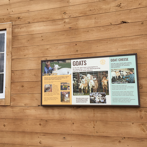 Woodstock Farm Sanctuary interpretive wall sign