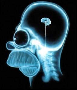 Human Mind Limit 3.jpg