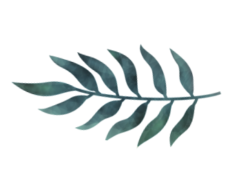 Branding - leaf.png