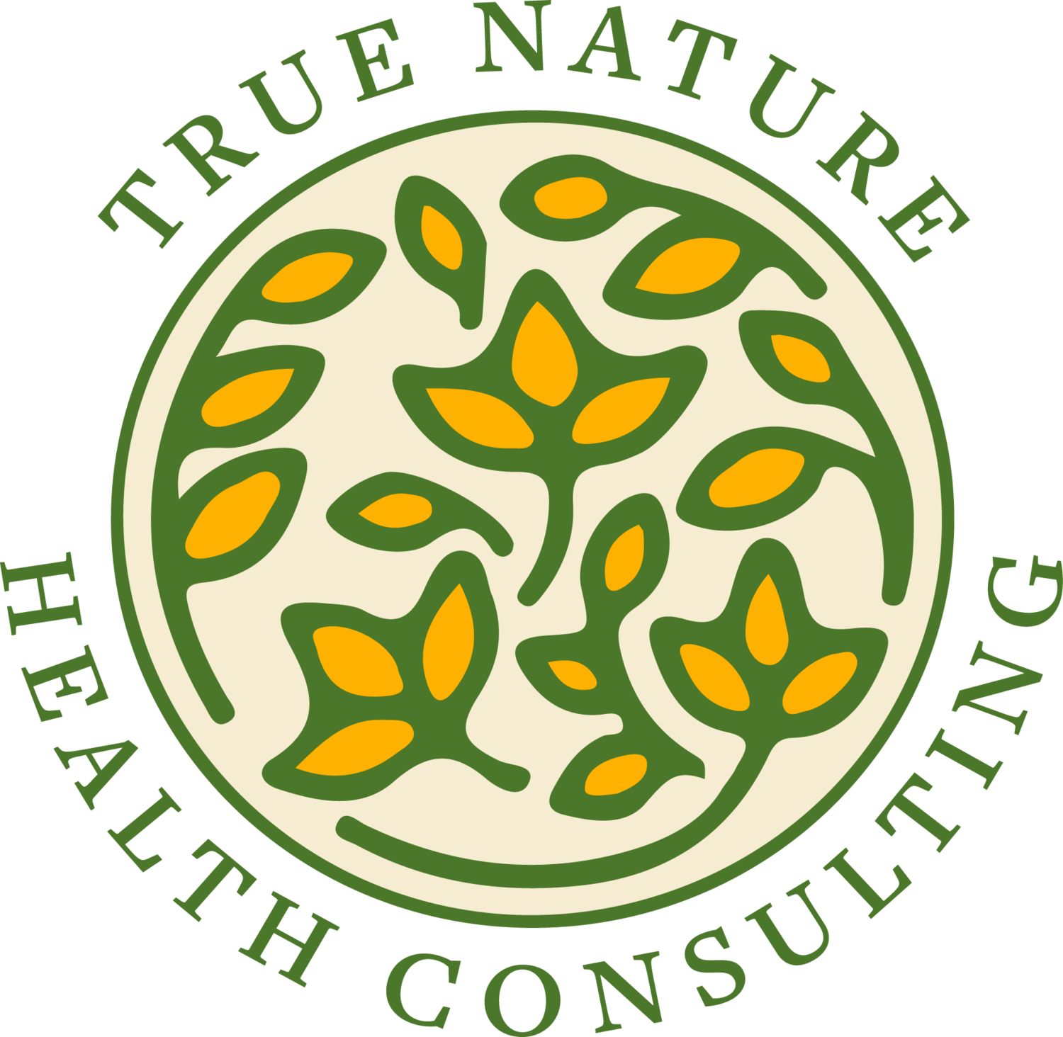 TRUE NATURE FUNCTIONAL HEALTH CONSULTING