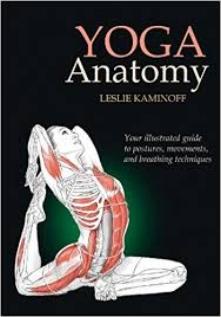 yoga anatomy.jpg