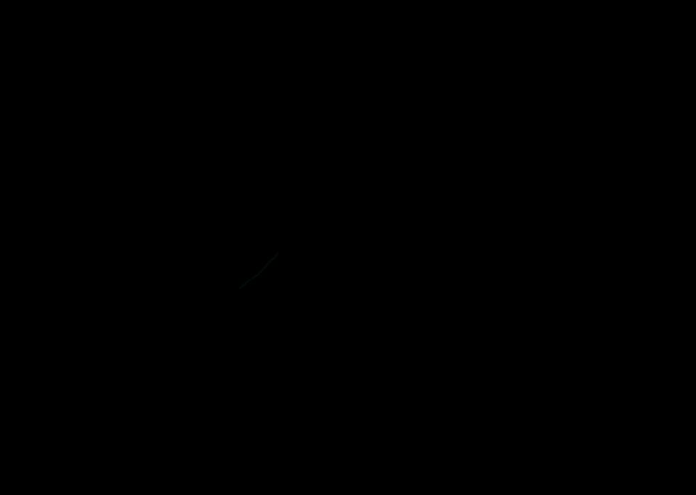 Logo Negro Corregido 2.png