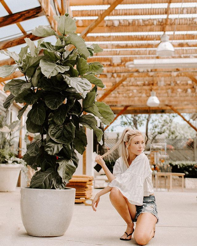 More of this gorgeous photo shoot.🍂 Model: @maddie1199  Location: @mulhalls . . . #Omaha #Nebraska #Portraits #Instagood #fpme #livethelittlethings #thatsdarling #littlethingstheory  #lookslikefilm #omahaphotographer #nebraskaphotographer #canon #thefolkpr0ject #photo_collective #theportraitpr0ject #pursuitofportraits #discoverportrait #bravoportraits #makeportraitsnotwar #portraitmood #modelomaha #omahamodel  #model #modeling #photoshoot  #photography #igdaily #aesthetic #aesthetictumblr  #heartbreak