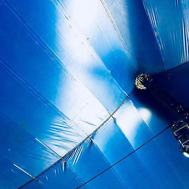 Blue at Bluesfest #bluesfest #byronbay #nsw #australia #marquee #musicfestival