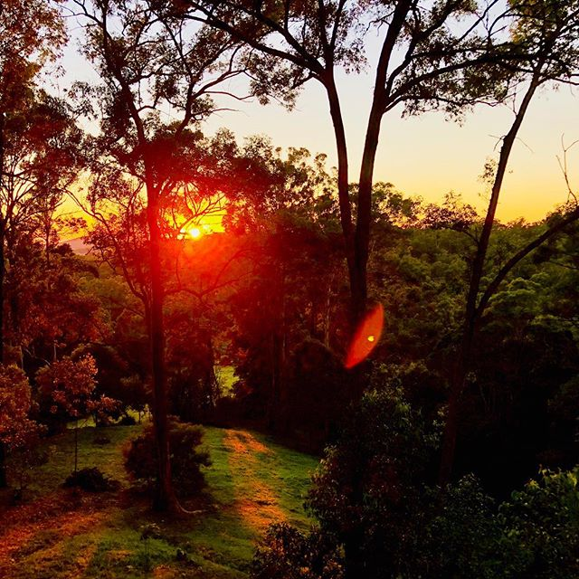 Let no sunrise' yellow noise  Interrupt it's ground (Emily Dickinson) #emilydickinson #poet #sunrise #australia  #queensland #morning #wintersun #wintersunrise