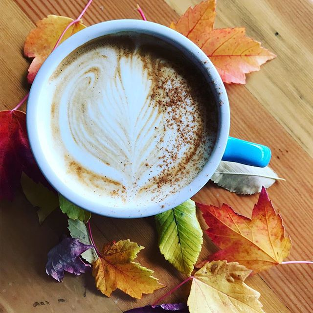 Hello Central Oregon Fall! This means hello pumpkin spice lattes! Our pumpkin spice is made in house; vegan and g-free and one sip makes you feel oh so cozy! #pumpkinspice #fall #centraloregon #bendoregon #dakinecafe #coavacoffee