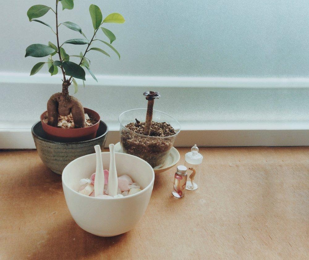 legs bowl -