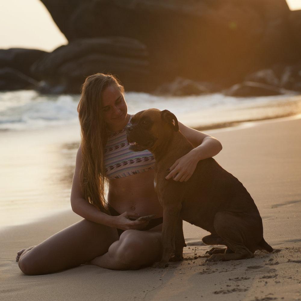 pexels-photo-319899-dogbeach.jpg