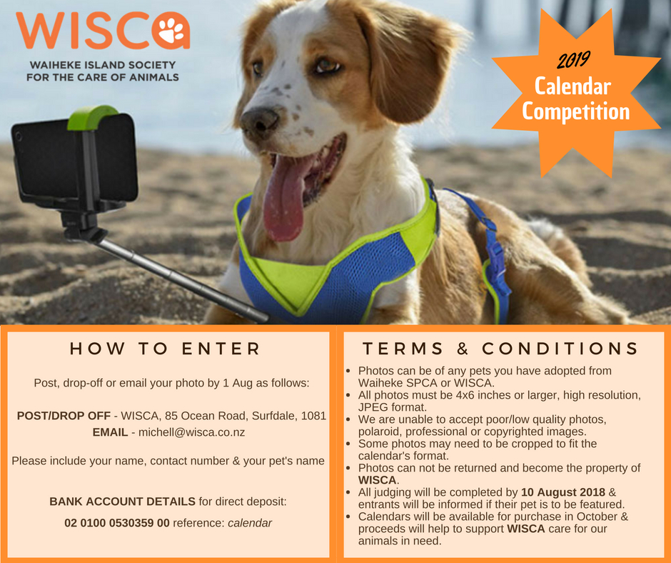 We are now receiving entries for this year's Calendar Competition! Send in a favourite photo of a pet you have adopted from Waiheke SPCA or WISCA, and the most furbulous will feature in the 2019 WISCA calendar - the ultimate compliment you can pay your fur-baby!