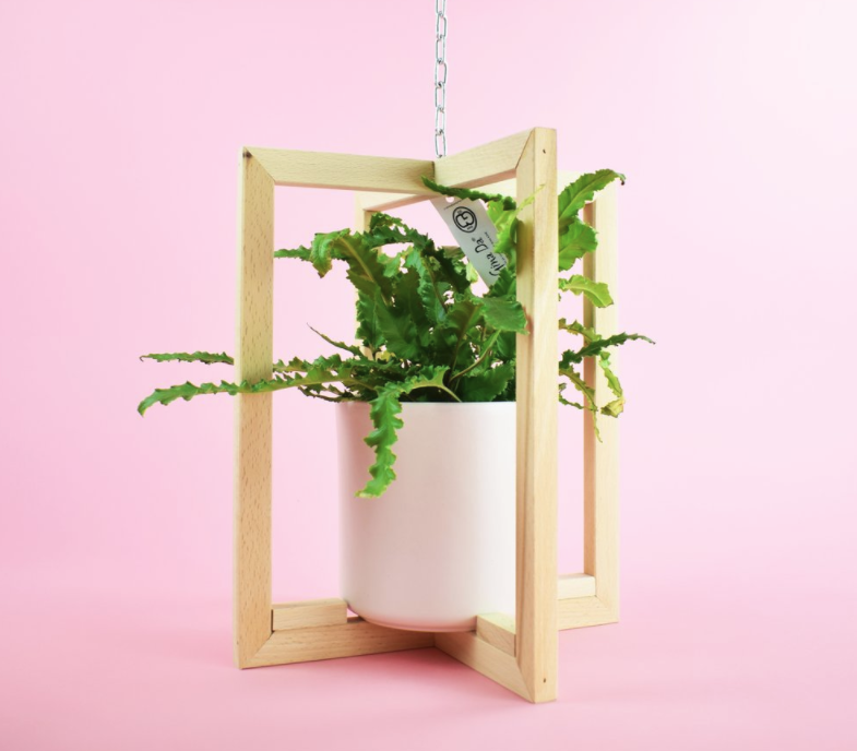 Invincible_Hanging_Planter.PNG