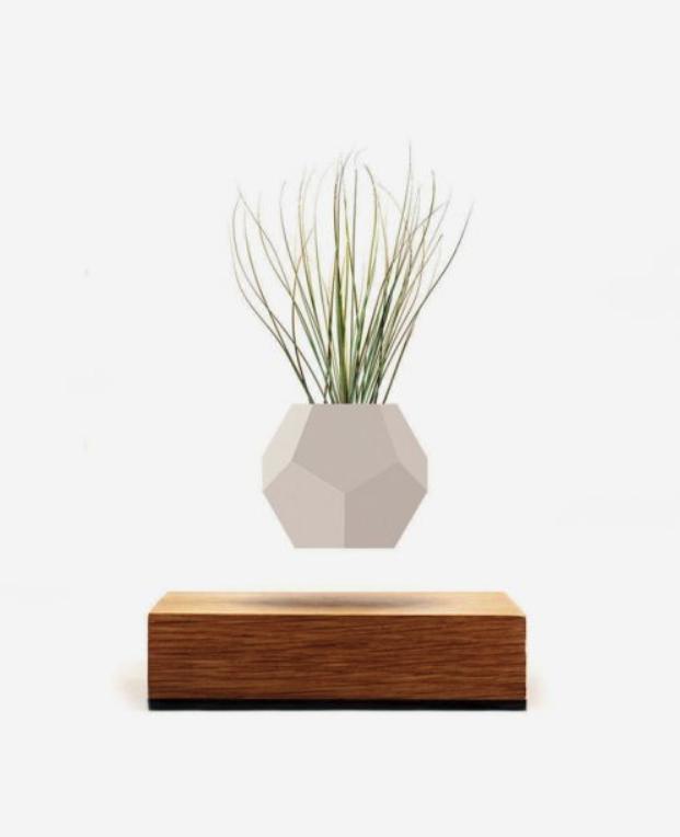 Invincible Levitating Flower Plant Pot from Flyte
