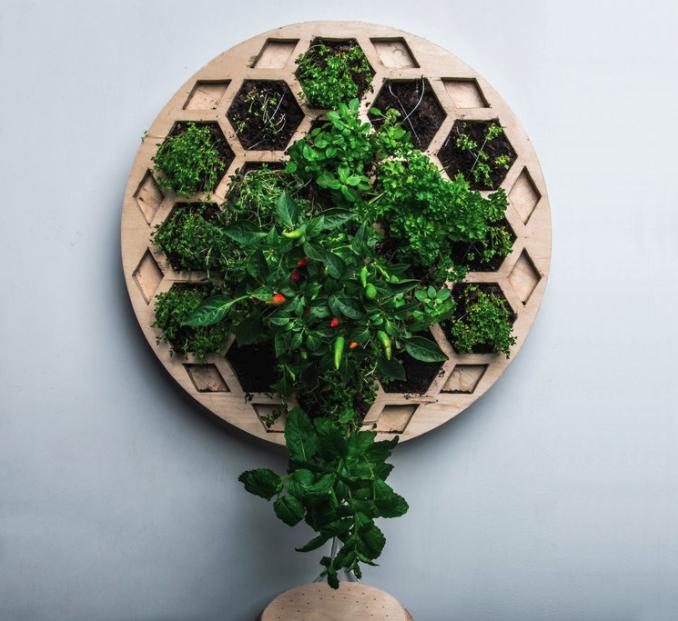 Ecologic wall planter  by designer Florian Wegenast