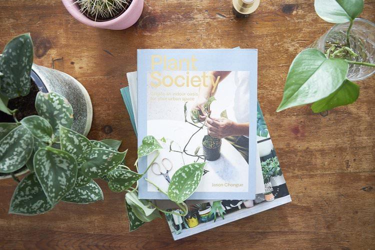 Plant Society  by Jason Chongue, 2018. Photo: InvincibleHousePlants.com