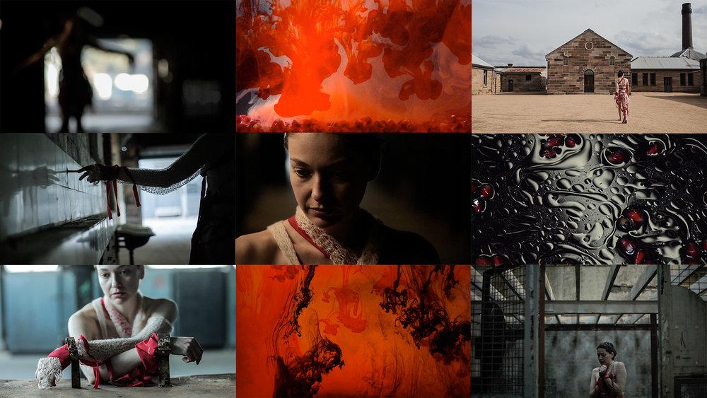 Images by Sissy M. Reyes &Ravi Glasser-Vora