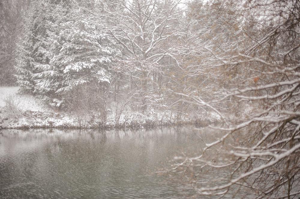 bpp-winterwonderland-002.jpg