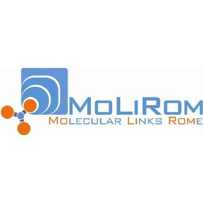 logo-molirom-sp2.jpg
