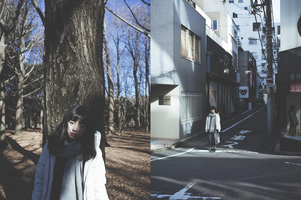 model/  Winghei