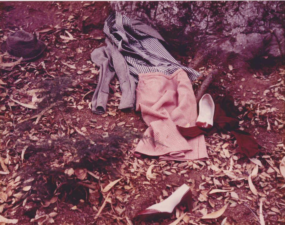 Hildegarde Duane,   Nancy Drew Goes to Washington , 1981  Original color photograph