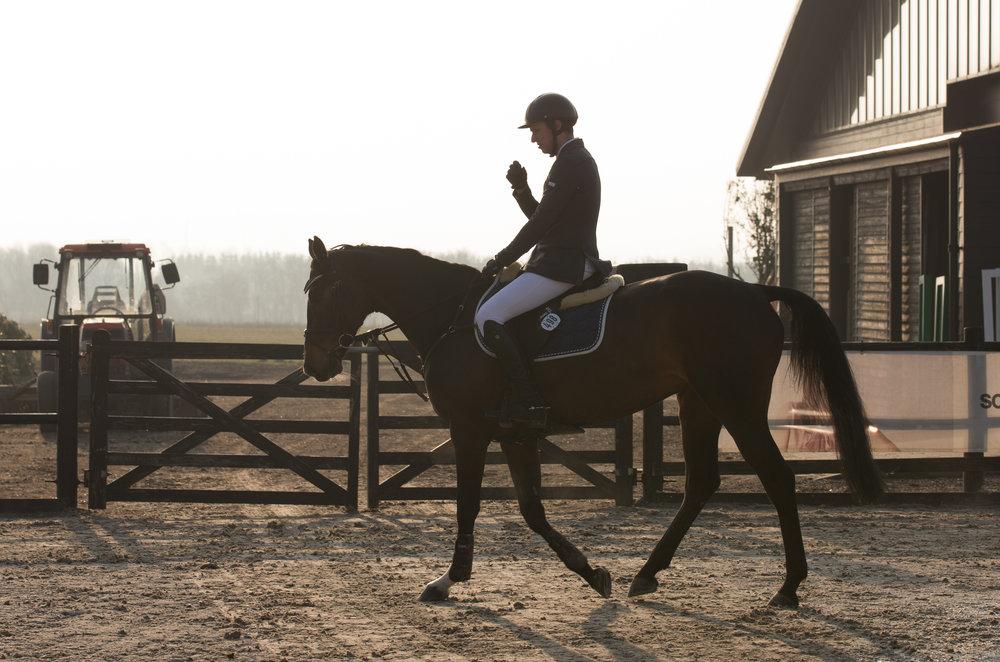 c - stævne for heste og ponyer - aflyst