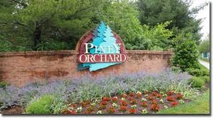 Homes for Sale in Piney Orchard