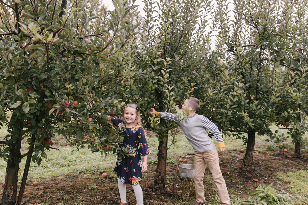 family-photography-session-at-hartford-apple-orchards-hartford-ohio-by-family-photographer-christie-leigh-photo-8.JPG