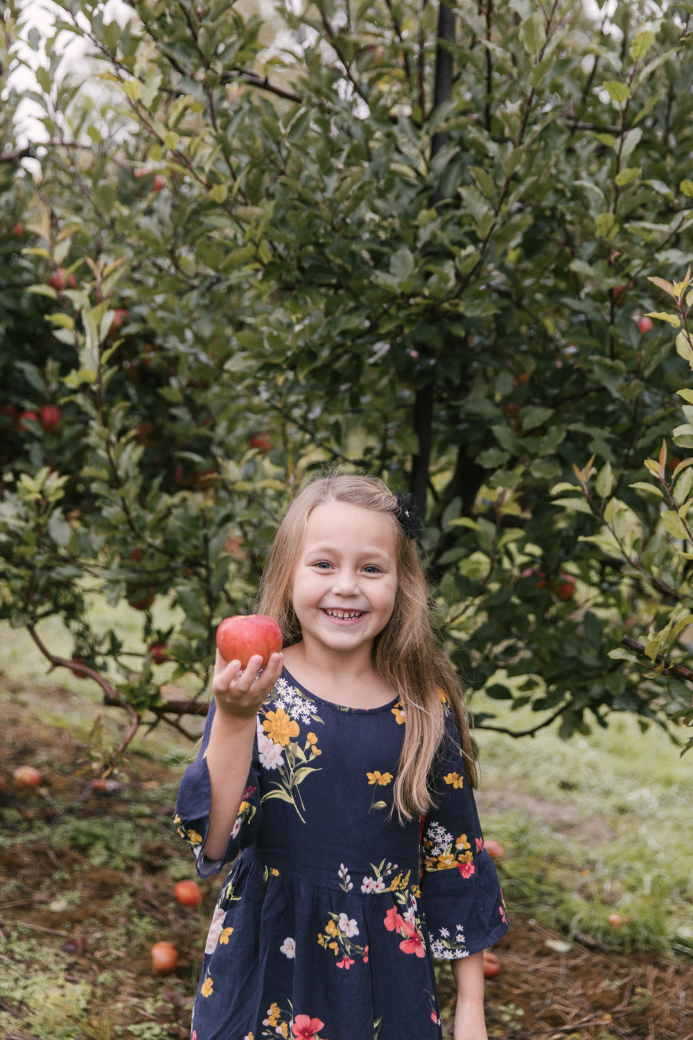 family-photography-session-at-hartford-apple-orchards-hartford-ohio-by-family-photographer-christie-leigh-photo-9.JPG