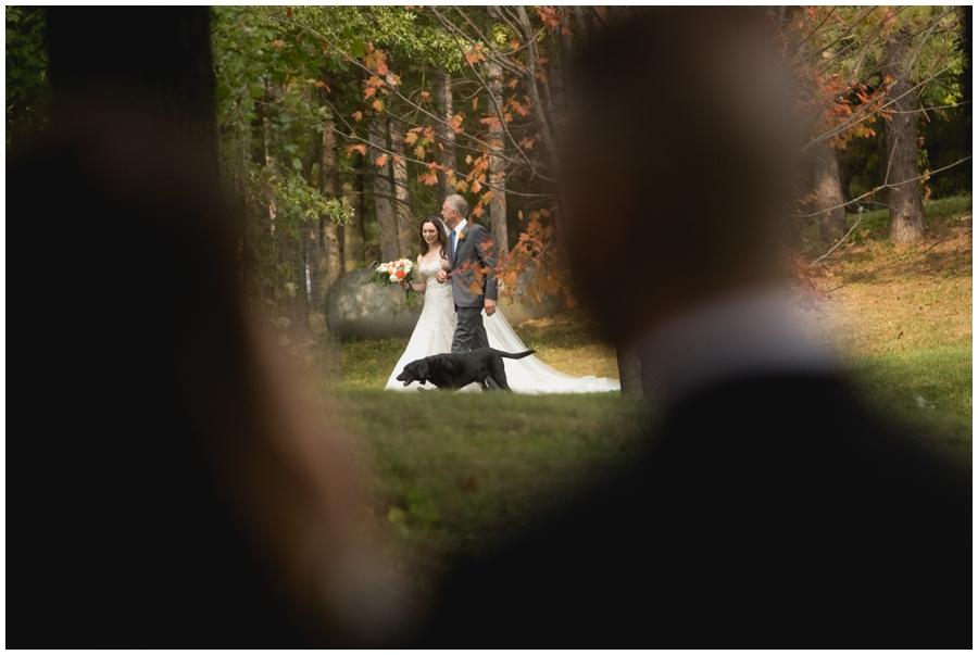 MN Wedding Planner. Stillwater Weddings_0262.jpg