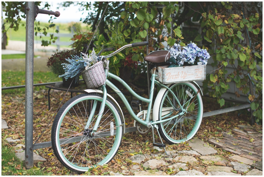 bicycle with blue flowers