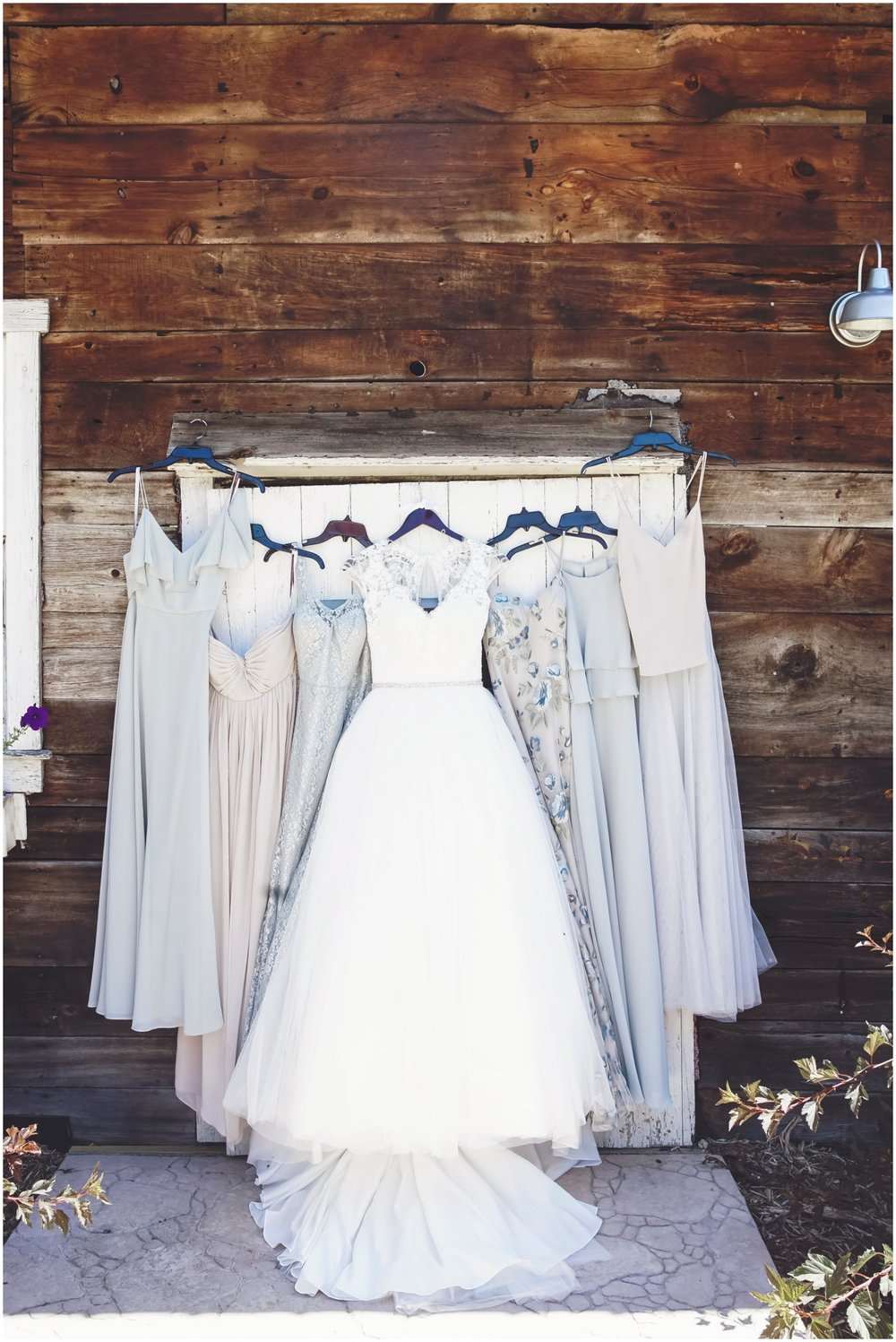 Bridesmaids and Bride dresses