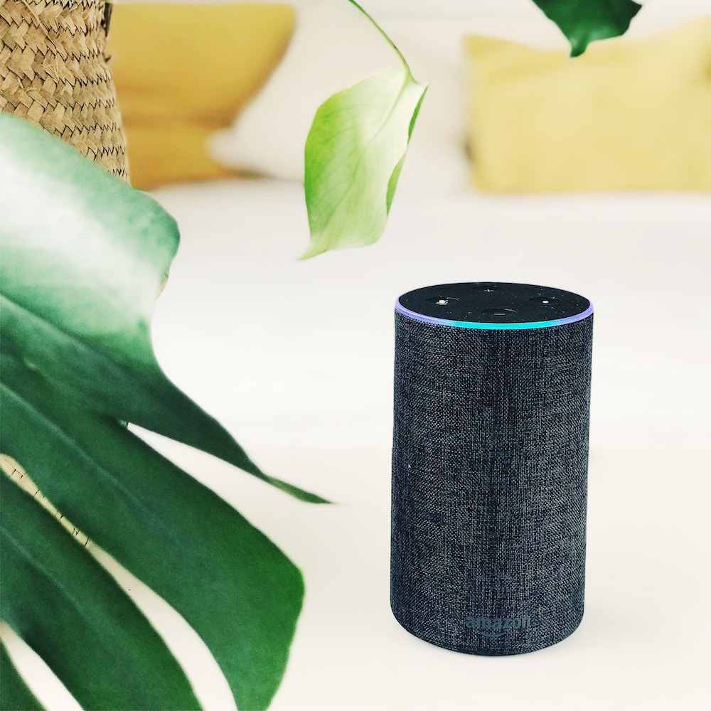"""Voice search is happening in a big way. - """"Hey, Siri, call my mom on speaker."""" """"Alexa, turn on the house lights."""" These are both sentences I have uttered today, despite the fact that I'm home alone. Digital assistants aren't just transforming the way we live, though. They're also shifting the way we search. As AI gets smarter, more and more people are trusting that they can simply ask their devices a question and it'll spit out a reliable answer. (""""Alexa, can dogs eat bananas?"""")The rise of voice search means long-tail keywords, especially those phrased as questions, are becoming increasingly important in SEO rankings. Get on board because it's happening — now."""