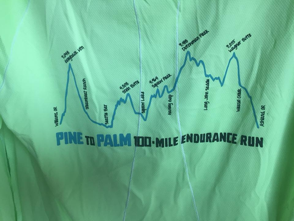 Here is the Pine to Palm course profile on the back of some race swag.