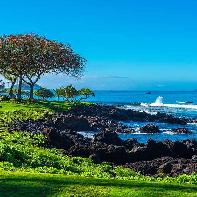 Hawaii from $1,549