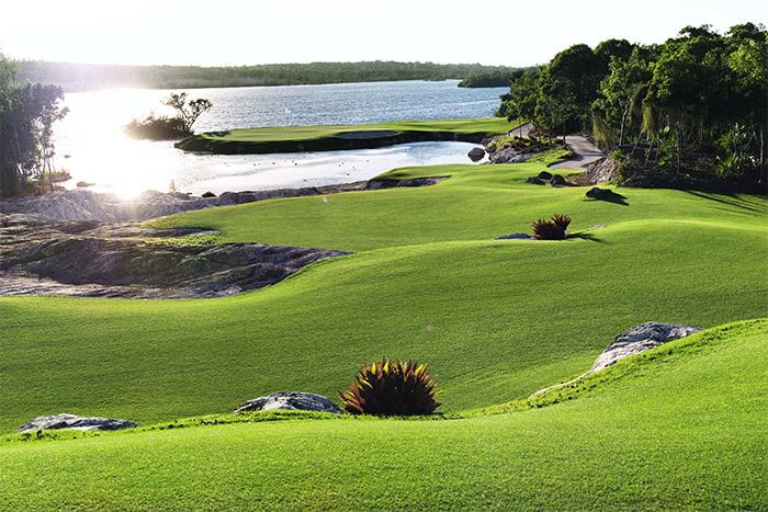 Championship Golf