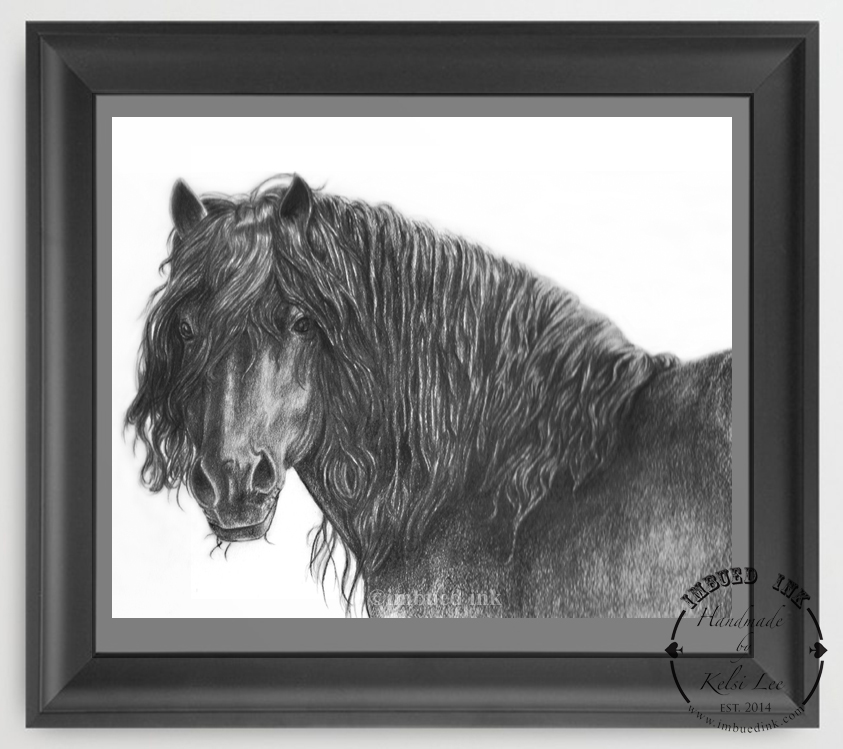 black horse framed.jpg