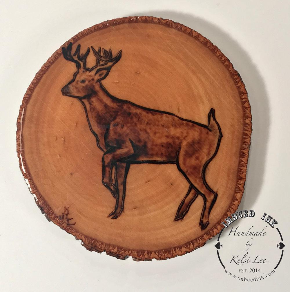 deer buck wb small.jpg