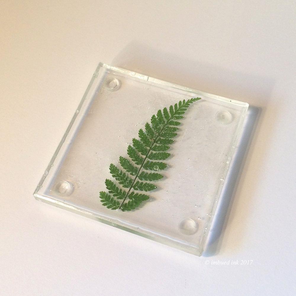 fern square coaster.JPG