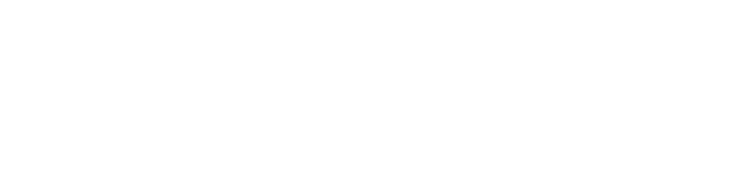City Asset Management