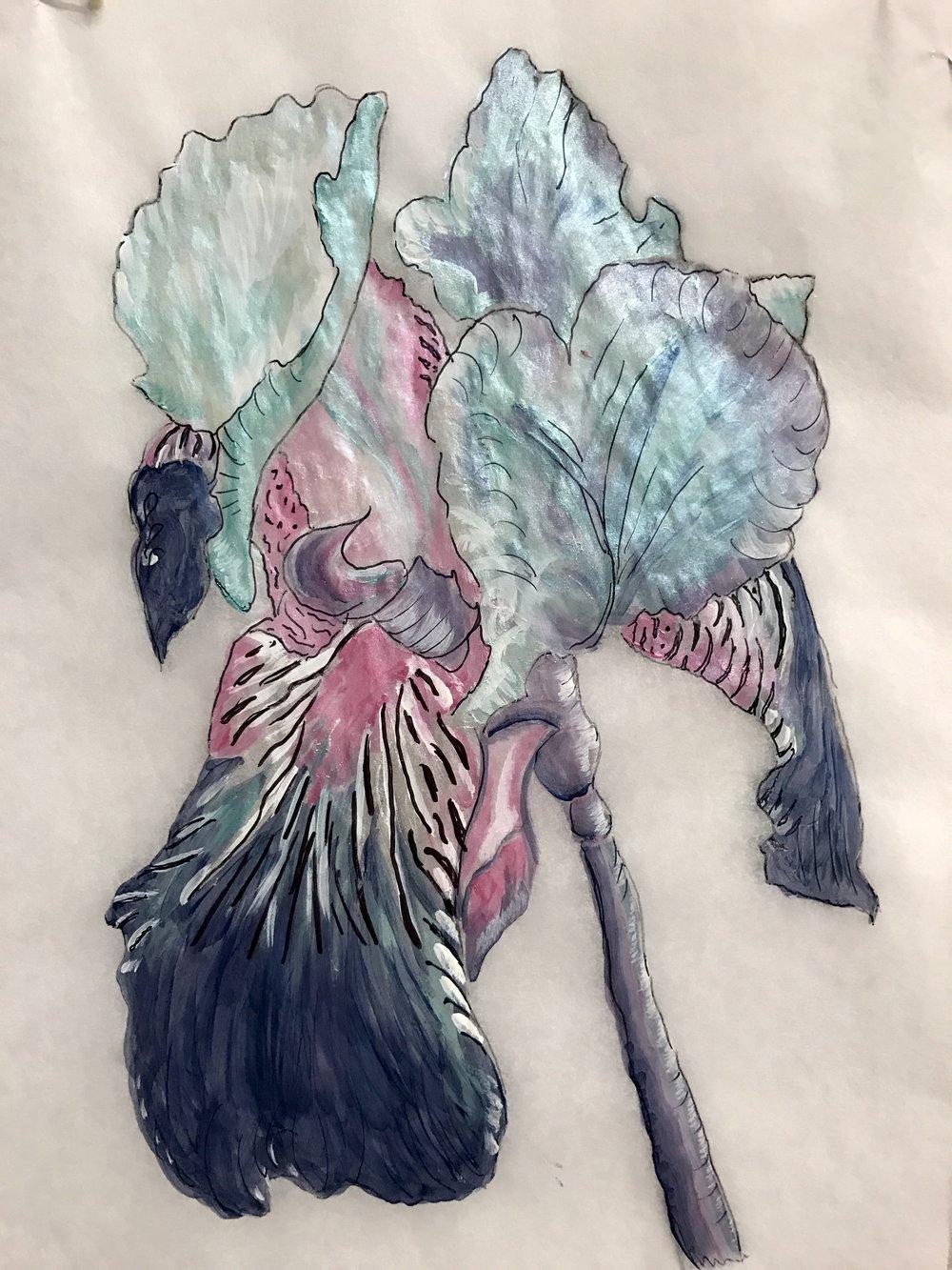 turquoise iris.JPG