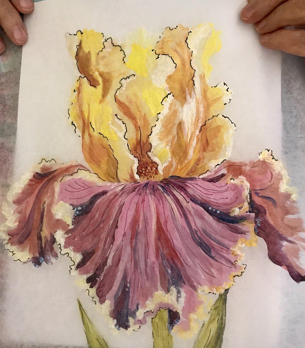 Painted Iris 1.jpg