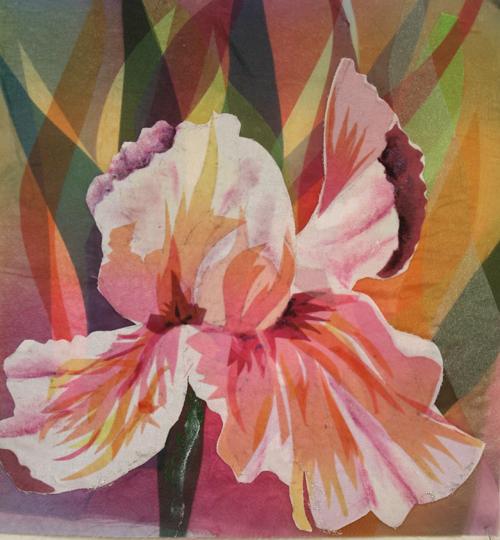 Sheer Iris image .JPG