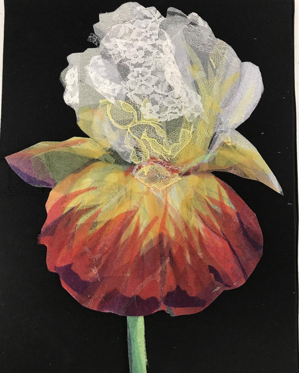 Sheer Iris image 2.jpg