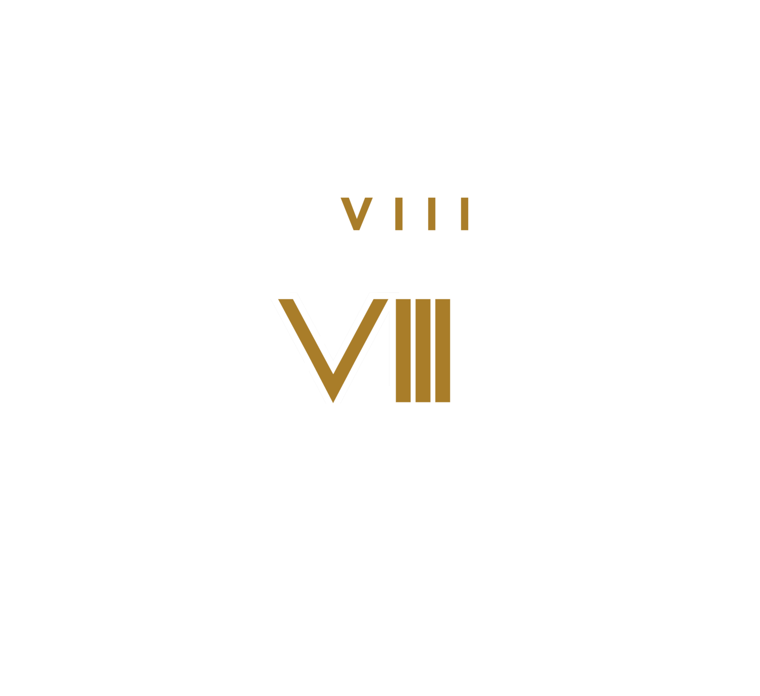 THE VIIITH