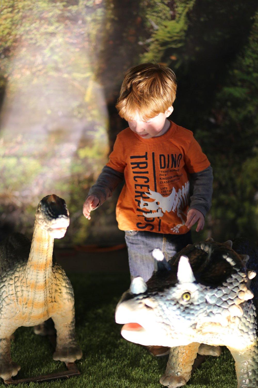 Jurassic Quest- baby dinos
