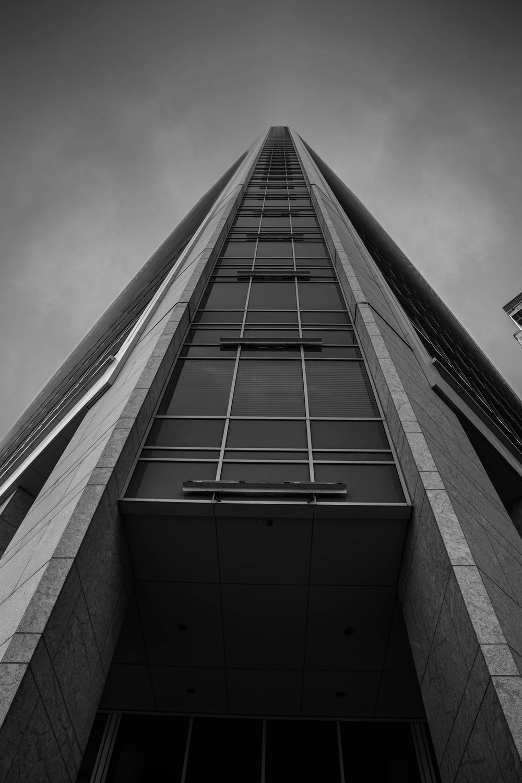 Manny's Creation, Charleston North Carolina Tall Building.jpg