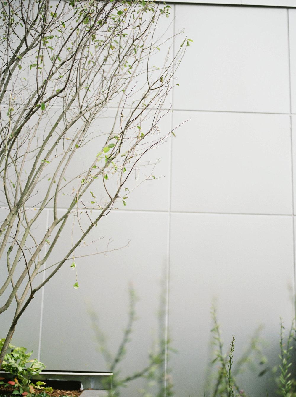 haley-richter-photography-500-walnut-wedding-philadelphia-architecture-131.jpg