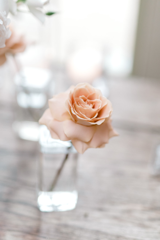 haley-richter-photography-jardin-de-buis-wedding-photos-greenhouse-wedding-bhldn-gown-lilac-wedding-bouquet-beaded-wedding-gown-new-jersey-weddings-garden-wedding