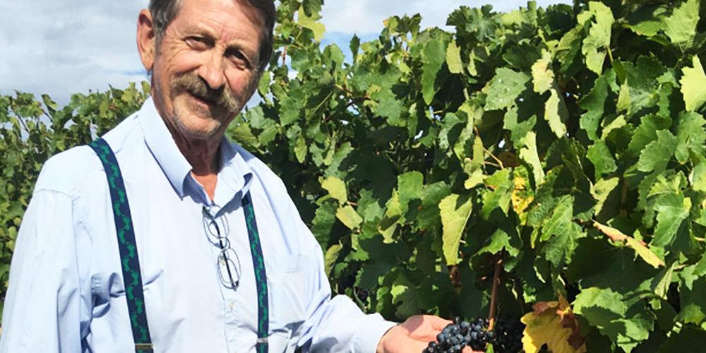 chris-shanahan-the-canberra-wine-region-2017-wrap_0001.jpg