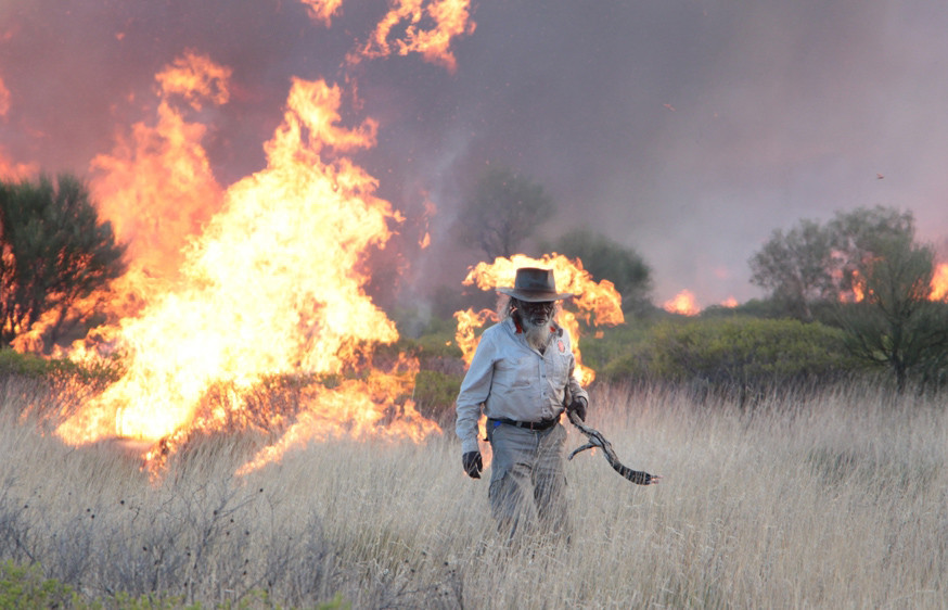 (Image: In Australia's Western Desert Martu traditional owners have undertaken small-scale burning as an important land management practice for tens of thousands of years.)
